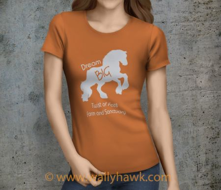 Dream Big Shirt - Female Sunset Orange
