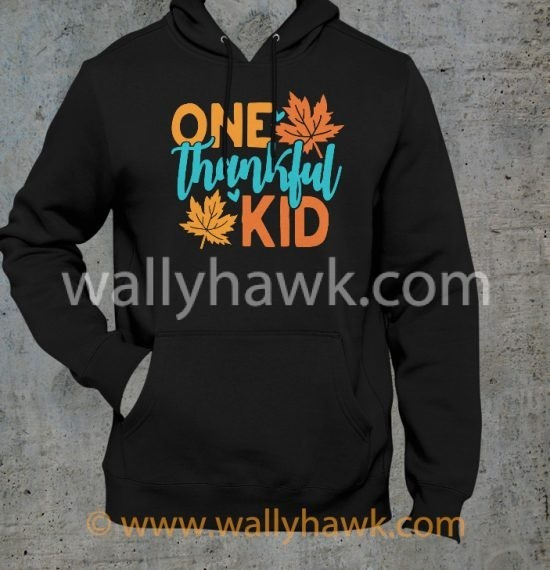 One Thankful Kid Hoodie