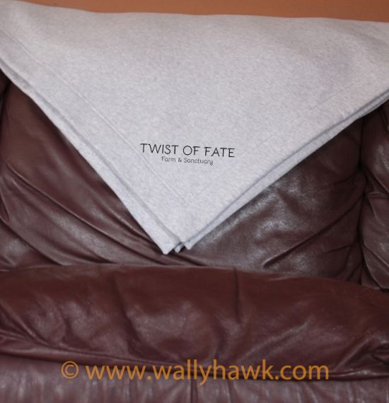 Twist of Fate Blanket - Gray