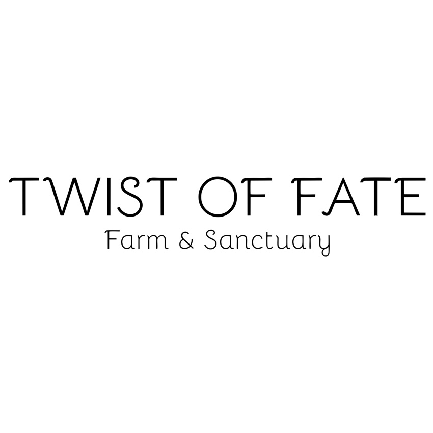 Twist of Fate +