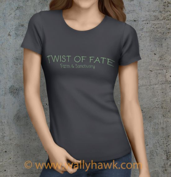 Twist of Fate Shirt - Female Charcoal